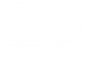 salesforce-logo-white